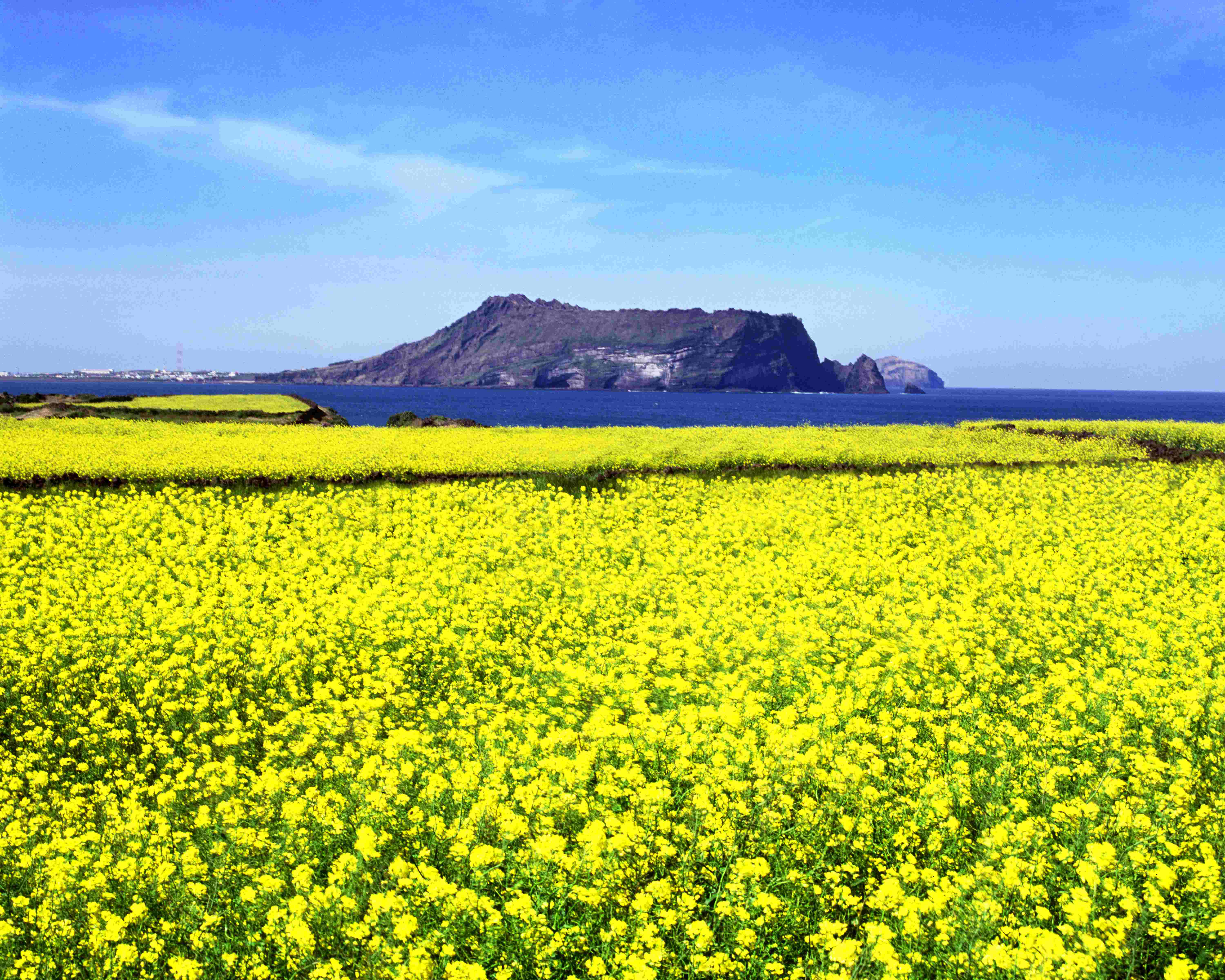 Indian MICE traveler to 'Jeju Island'  ORIENT PUBLICATION